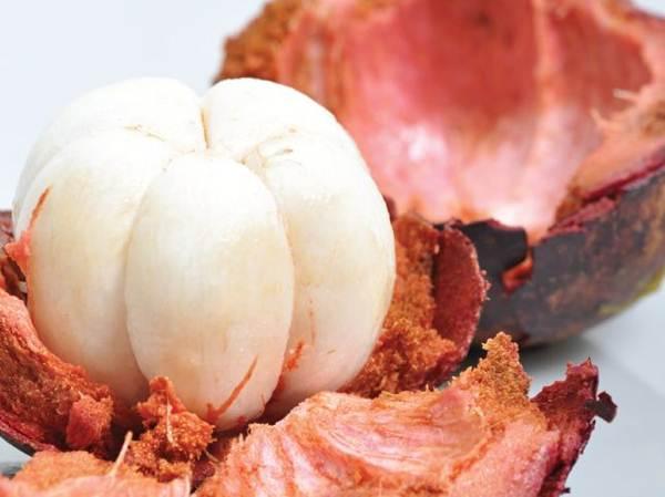 Khasiat Manggis untuk Kolesterol dan Penyakit Jantung
