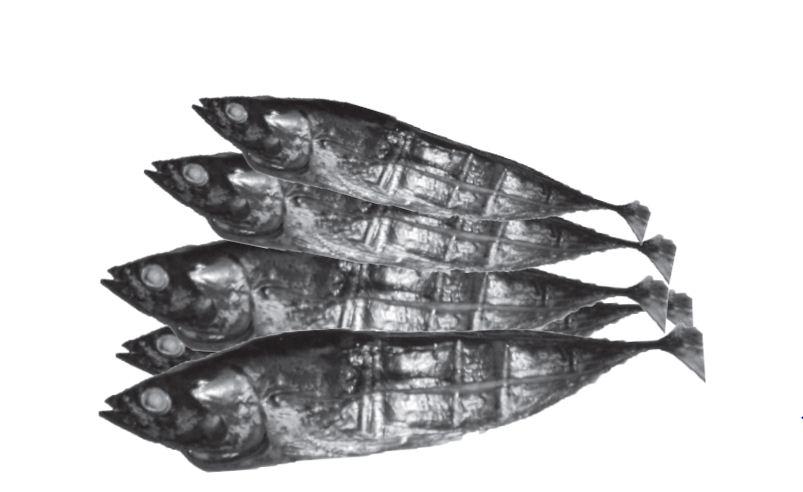 Pengolahan Ikan Asap
