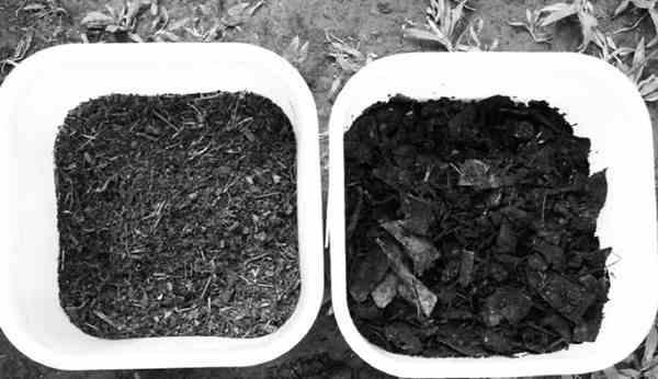 Faktor yang Mempengaruhi Pembentukan Kompos