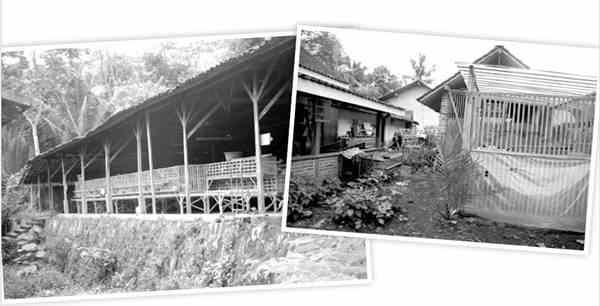 Lokasi Usaha Ayam Elba
