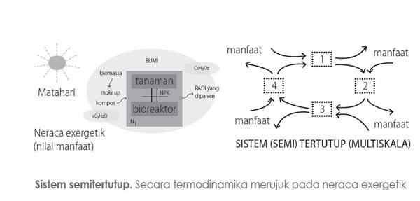 Interaksi Ekosistem Tanaman dengan Bioreaktornya