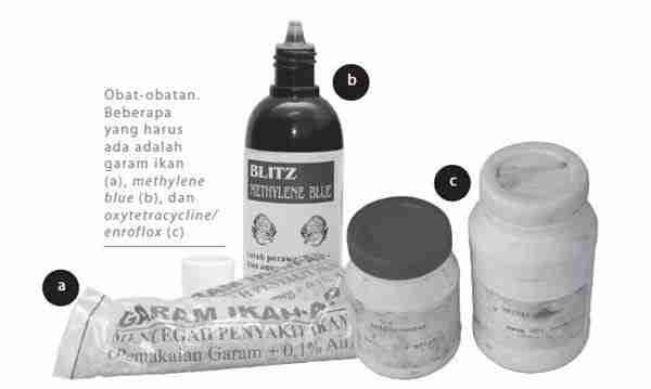 Obat dan Sarana Pendukung Pembenihan Gurami
