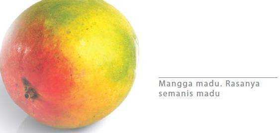 Mangga Madu
