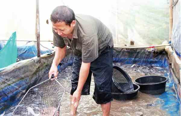 Menjalin Kerja Sama Budidaya Ikan