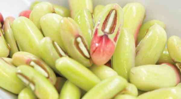 Kacang Sayur