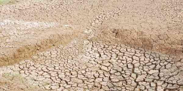 Keringkan Kolam Terlebih Dahulu Untuk Persiapan Kolam Nila