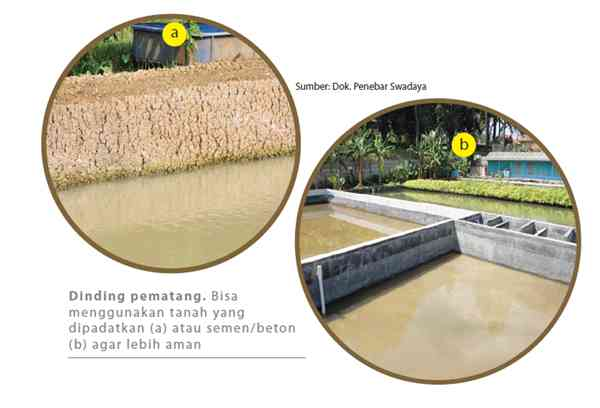 Perbaiki Pematang Kolam Nila yang Rusak