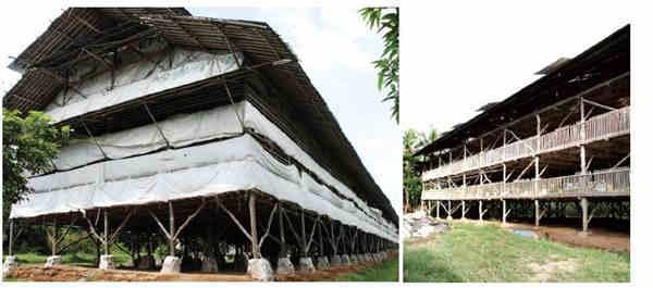 Konstruksi Kandang Terbuka Ayam Pedaging