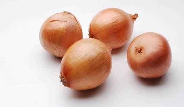 bawang bombay (2)