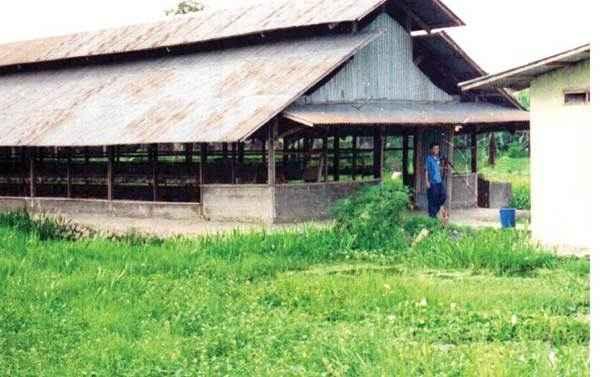 Lokasi Pengembangan Usaha Ayam Buras Berdasarkan Aspek Sosial