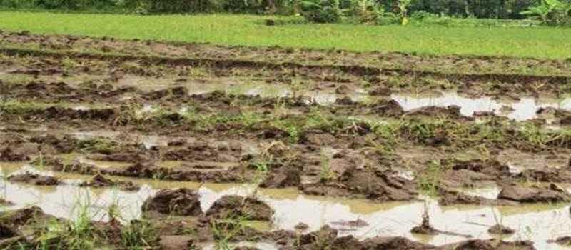 Perlunya-Pembenahan-Tanah