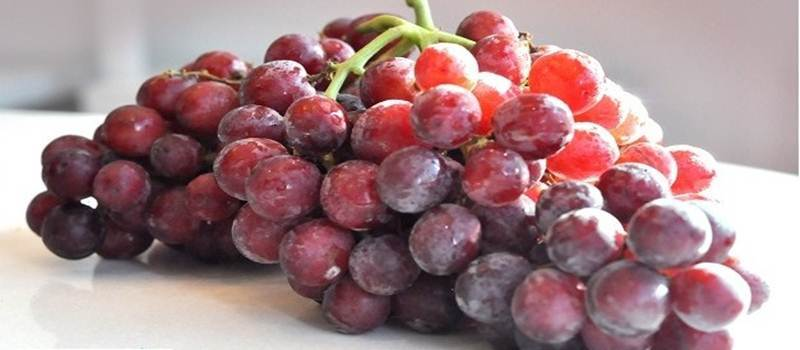 Anggur Merah Bermanfaat Untuk Jantung