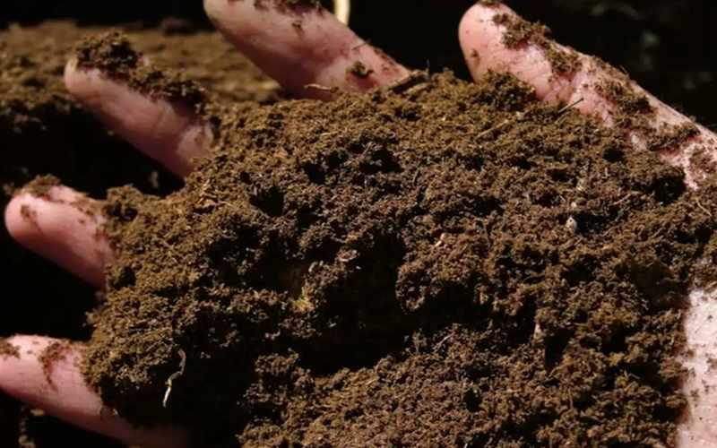 Mengubah Limbah Pertanian Menjadi Pupuk Kompos