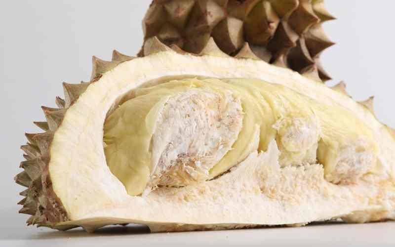 Hasil Panen dan Perdagangan Durian