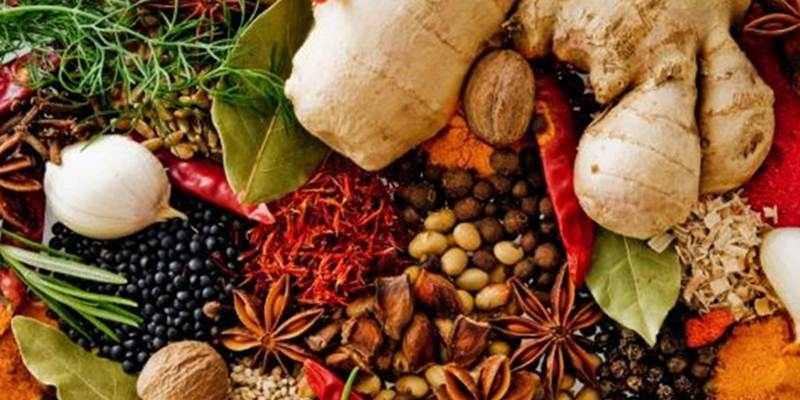 Indonesia Kaya dengan Obat Herbal