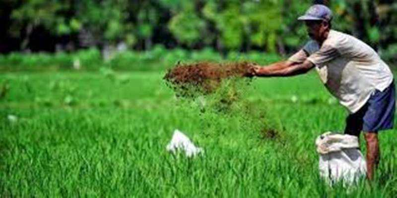 Pemerintah Aktifkan Puluhan Desa Menjadi Lumbung Pangan