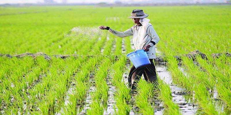 Tingkatkan Produksi Pertanian dengan Aplikasi