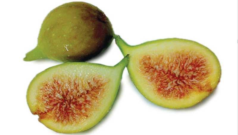 buah tin hijau