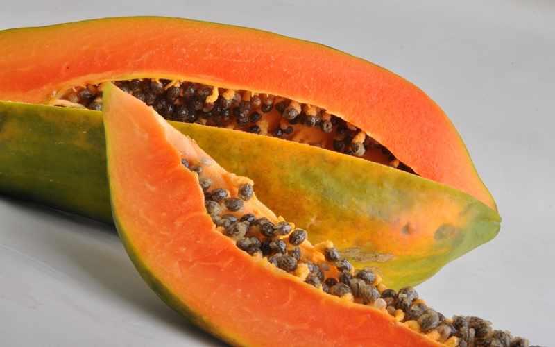 Mengenal Agroekologi dan Varietas Unggul Pepaya