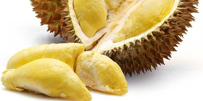 Mengenal Spesies Durian