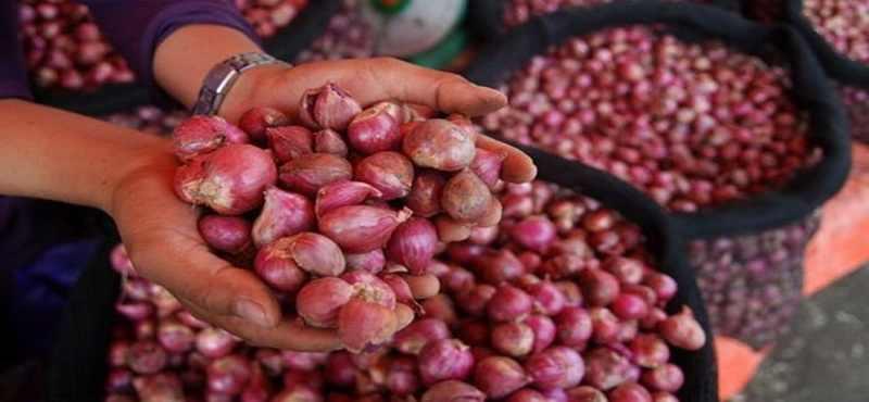 Mentan Harga Bawang Merah di Pasar Induk Turun Ke Rp16.000 Per Kg
