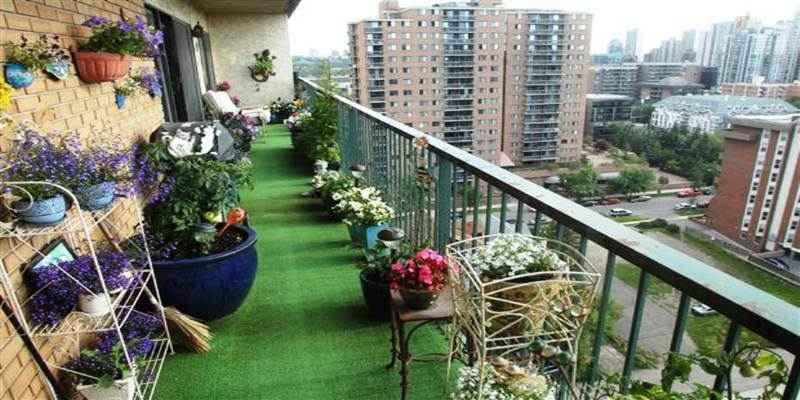 Tips Mempercantik Balkon Apartemen dengan Tanaman Hias