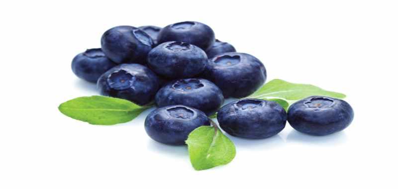 Turunkan Risiko Diabetes dengan Bluberry dan Apel
