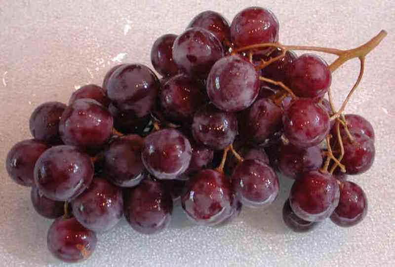 anggur 4