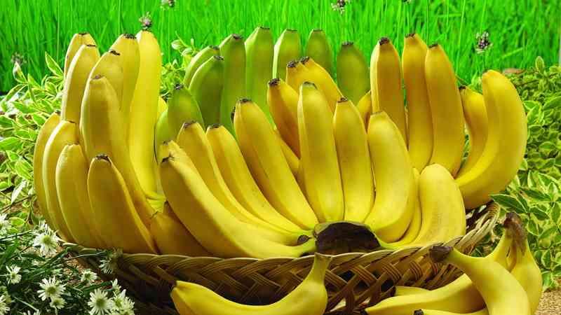 pisang 7