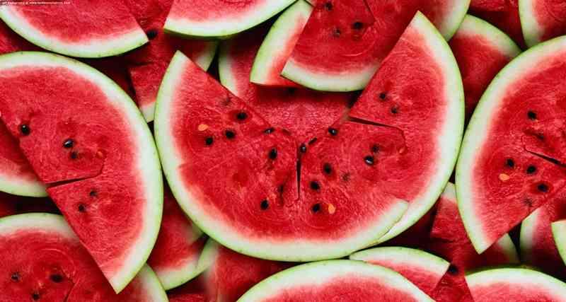semangka 2