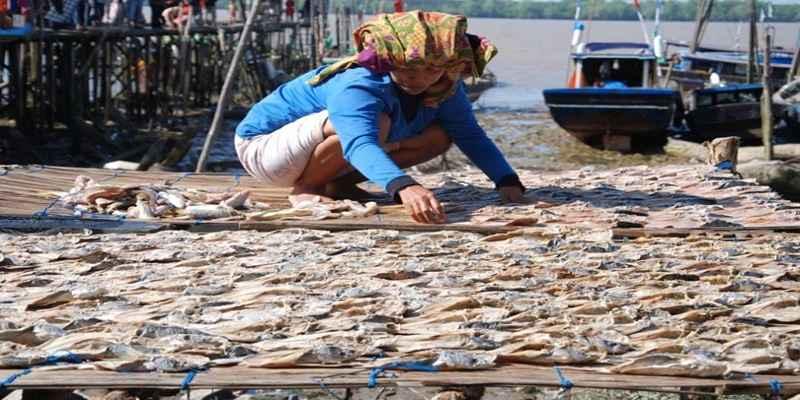 Mahasiswa ini Membuat Alat Pengering Ikan Asin