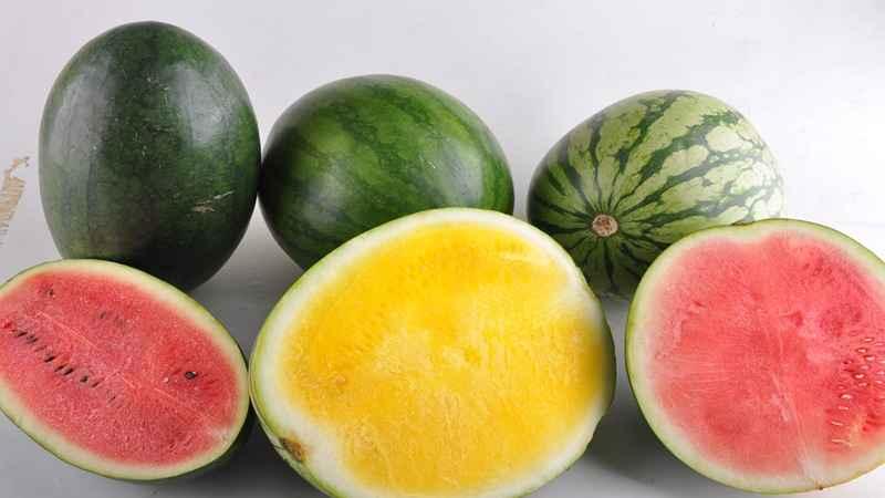 Tips Agar Makanan di Kulkas Tak Banyak Dibuang