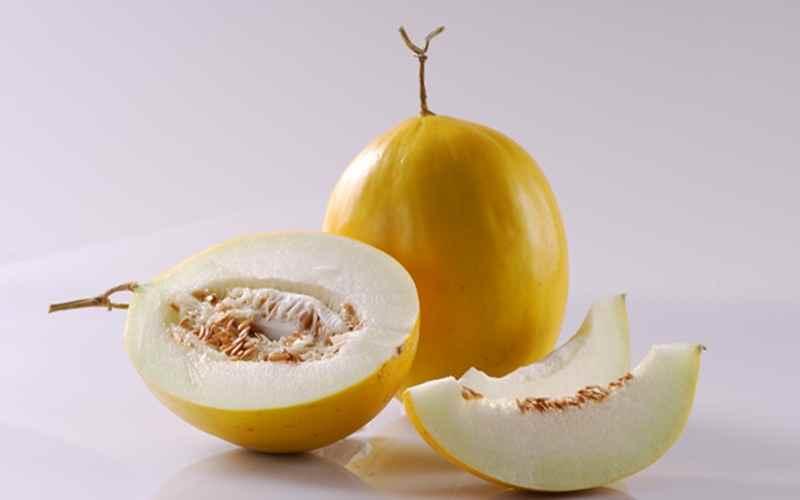 Penggunaan Varietas Hibrida pada Melon