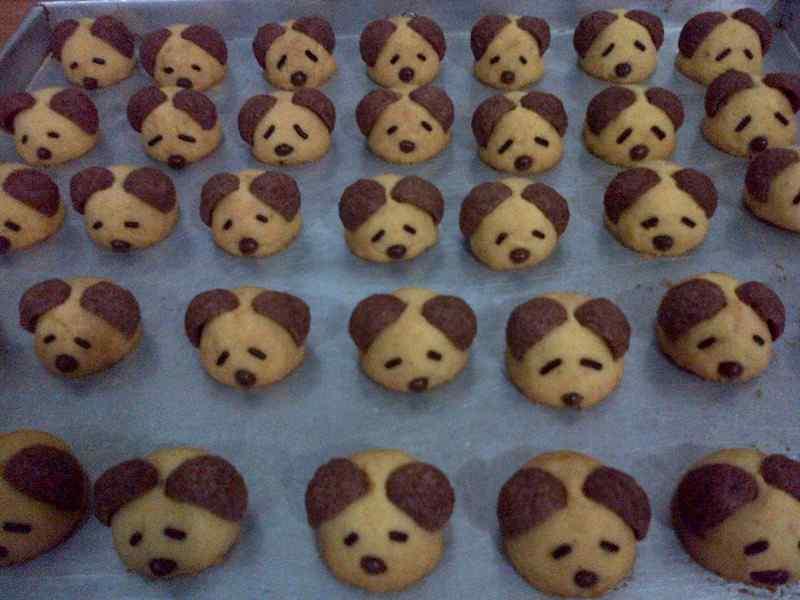 Mudahnya Membuat Cookies Sendiri untuk Anjing