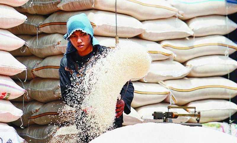 Harga Beras di Lampung Melonjak Akibat Berakhirnya Masa Panen