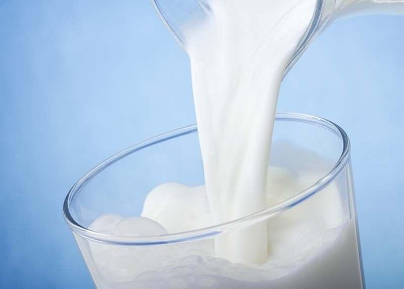 Menghasilkan Susu Tanpa Sapi