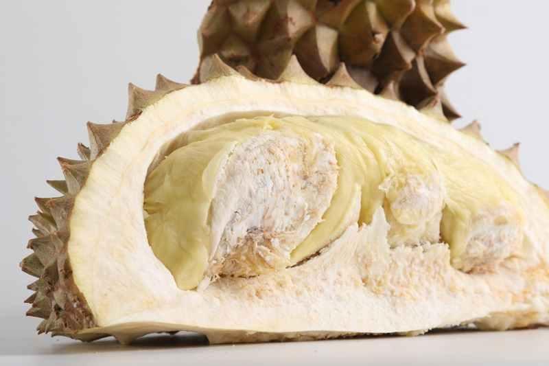Langkah-langkah Budidaya Durian Montong