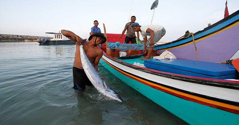 Nelayan DIY Membutuhkan 200 Kapal Baru Guna Tingkatkan Pendapatan