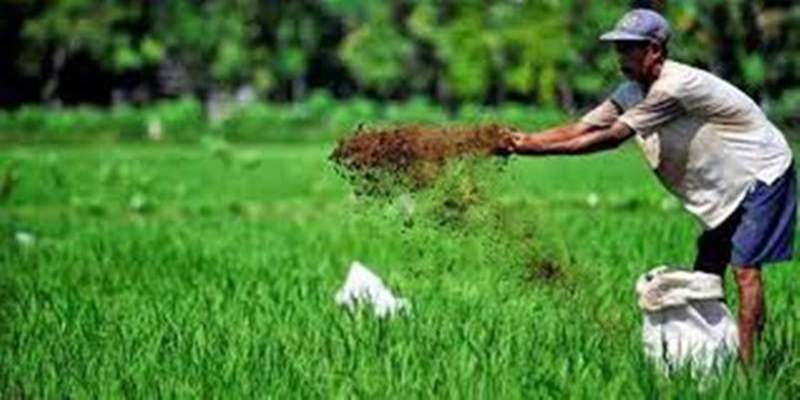 Pertanian Thailand Lebih Produktif Ketimbang RI