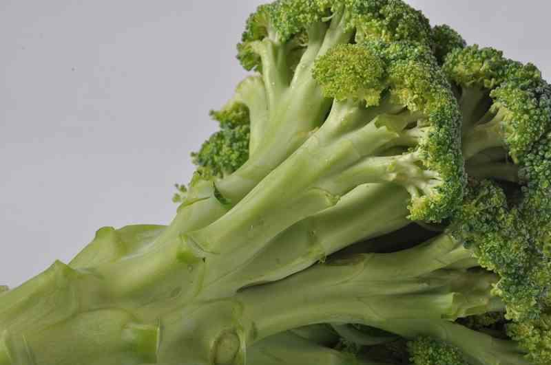 Budidaya Brokoli Skala Industri Sebagai Peluang Usaha