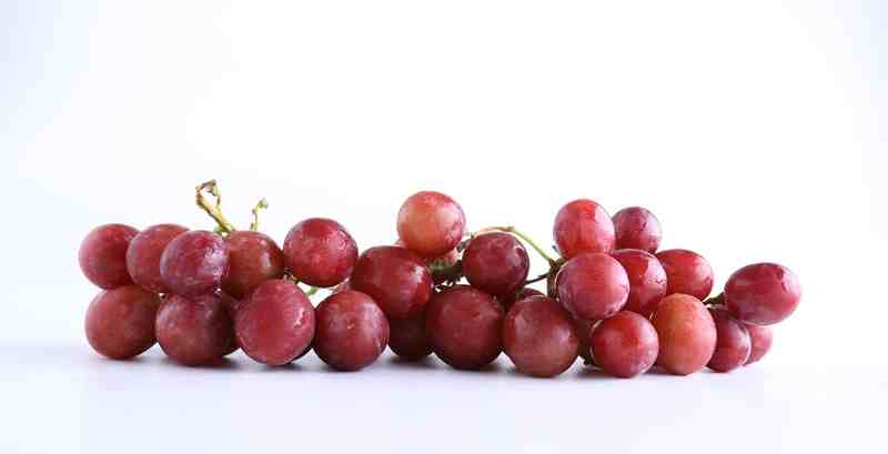 Tips Jitu Membasmi Hama Anggur