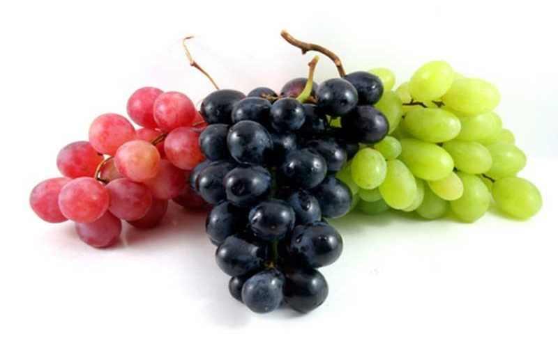 lima-bahaya-buah-anggur-yang-tak-terduga
