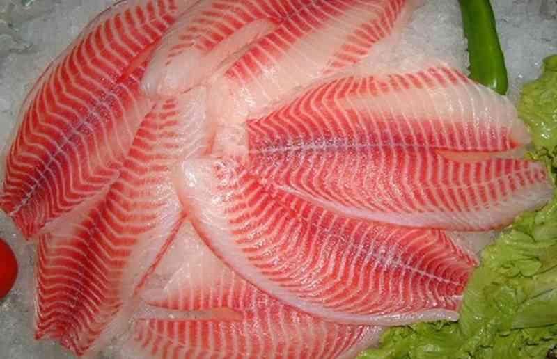 yuk-lihat-manfaat-ikan-mujair-untuk-kesehatan