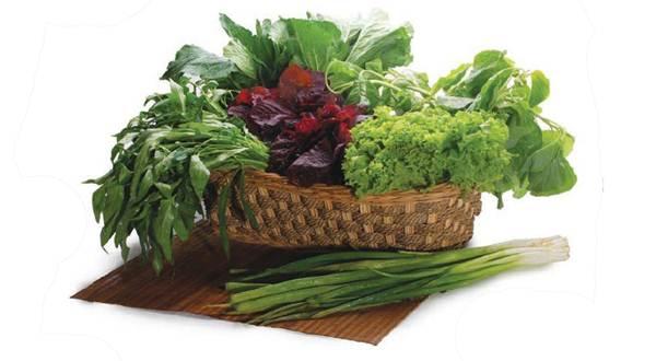 manfaat sayuran bagi tubuh manusia