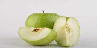 Sifat Botani Tanaman Apel
