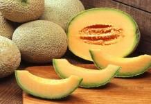 Melon Asal Jepang Berharga Fantastis