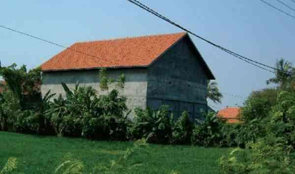 Mengenal Tipe Tata Ruang Dan Konstruksi Rumah Walet Artikel Pertanian Terbaru Berita Pertanian Terbaru