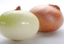 Benarkan, Bawang dan Jeruk Nipis dapat Menyembuhkan Gagal Ginjal 1
