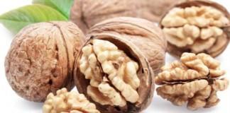 Berbagai Manfaat Kacang Walnut