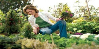 Berkebun Bisa Mencegah Penyakit Alzheimer